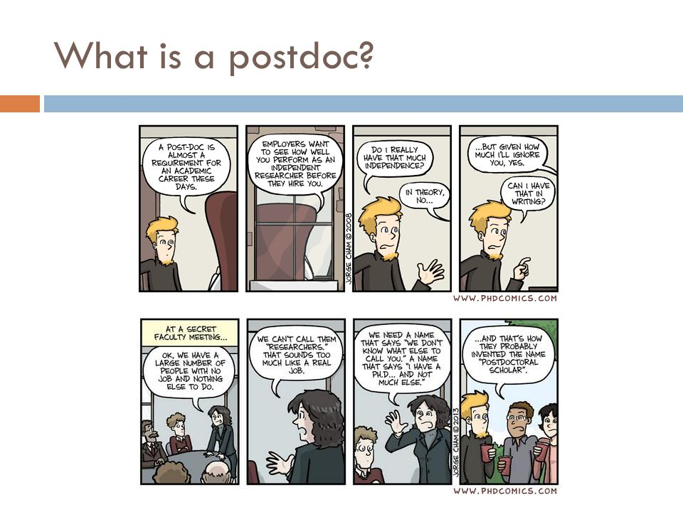 What is a postdoc