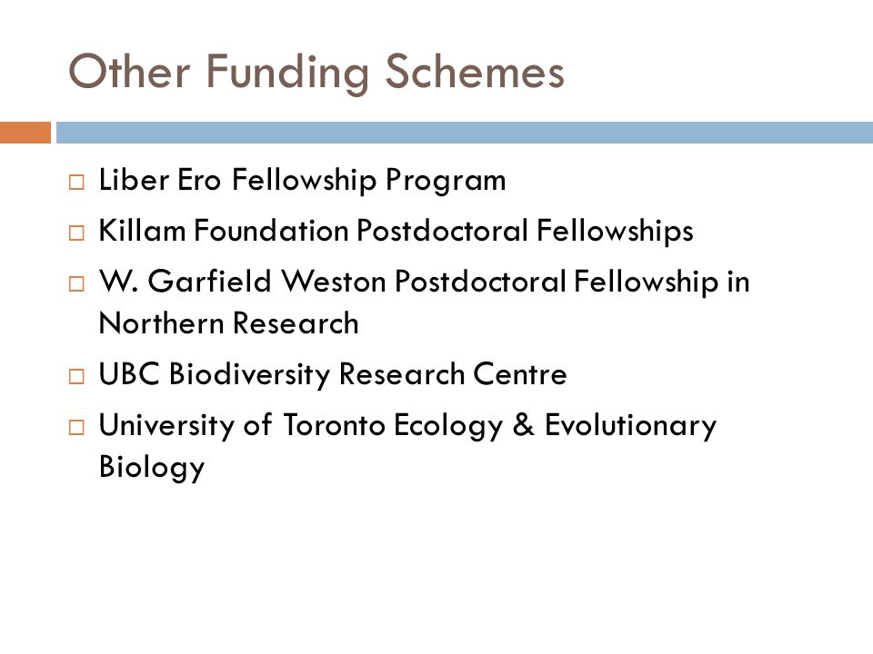 Other Funding Schemes Liber Ero Fellowship Program