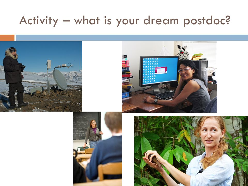 Activity – what is your dream postdoc