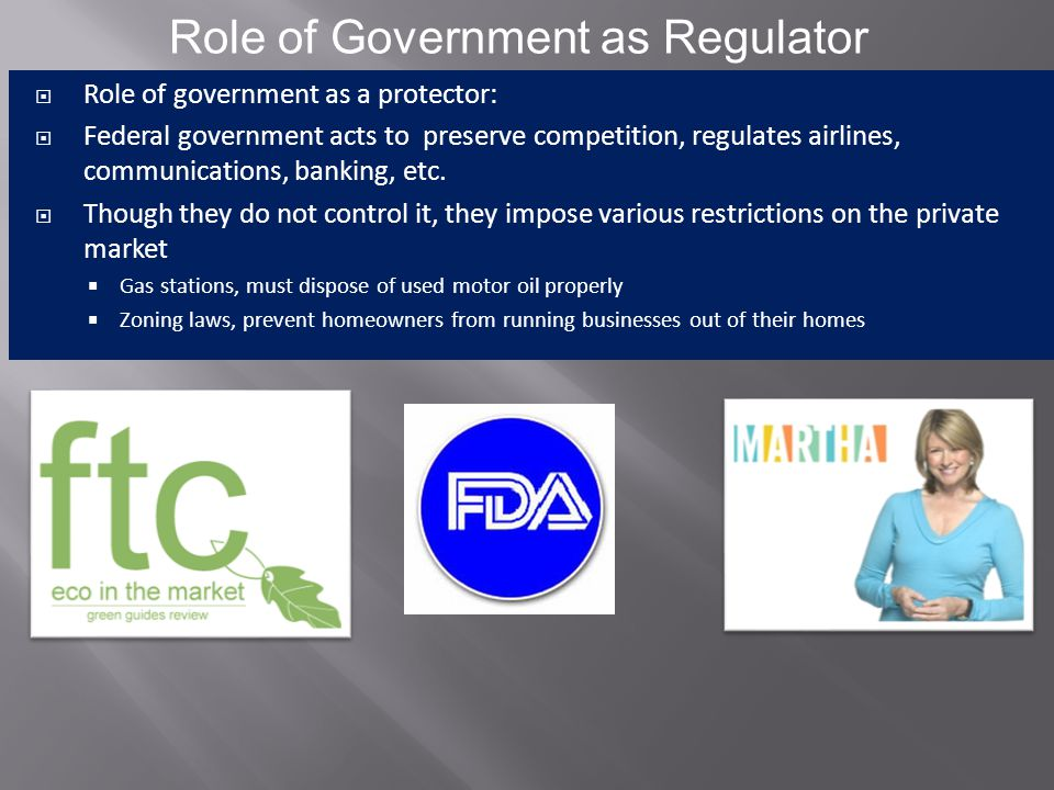 Role of Government as Regulator