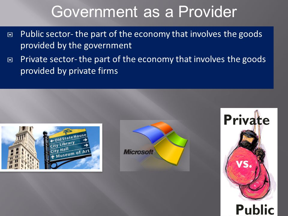 Government as a Provider