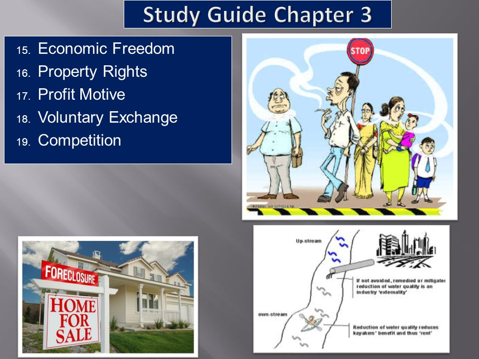Study Guide Chapter 3 Economic Freedom Property Rights Profit Motive