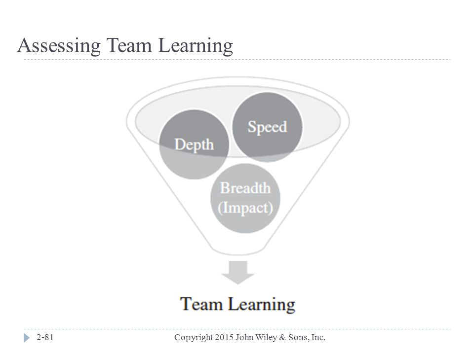 Assessing Team Learning