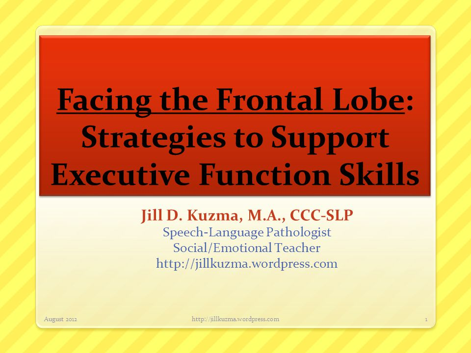 Facing the Frontal Lobe: Strategies to Support Executive Function Skills