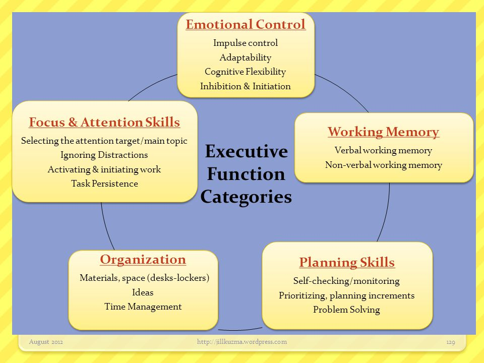 Focus & Attention Skills
