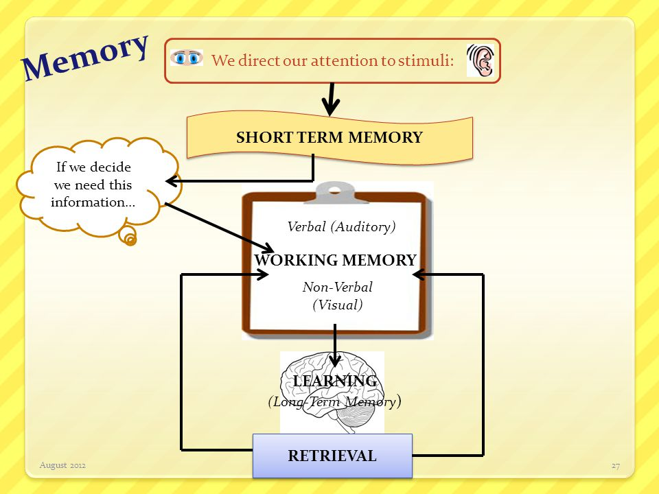 Memory We direct our attention to stimuli: SHORT TERM MEMORY