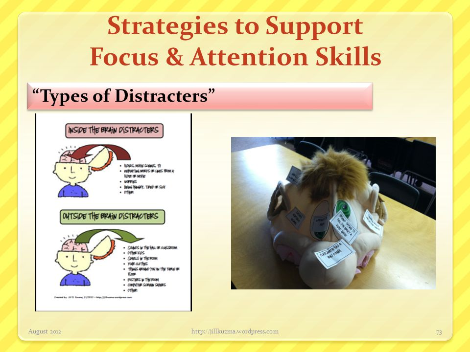 Strategies to Support Focus & Attention Skills