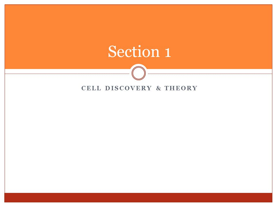Cell Discovery & Theory