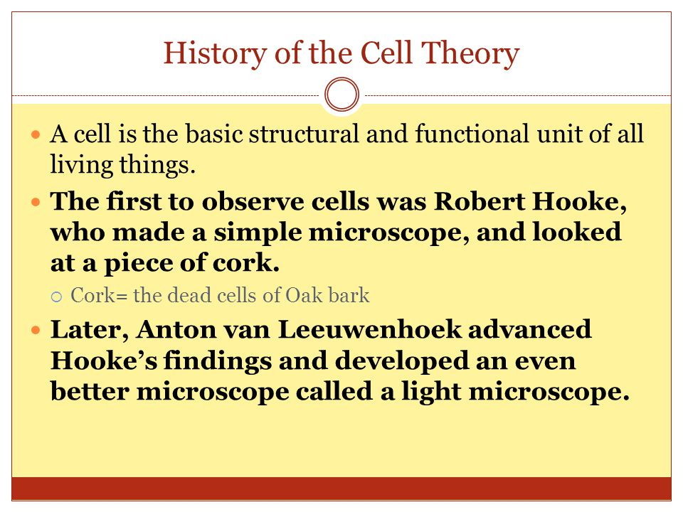 History of the Cell Theory