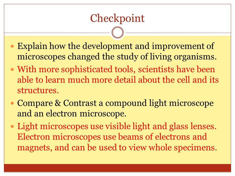 Checkpoint Explain how the development and improvement of microscopes changed the study of living organisms.
