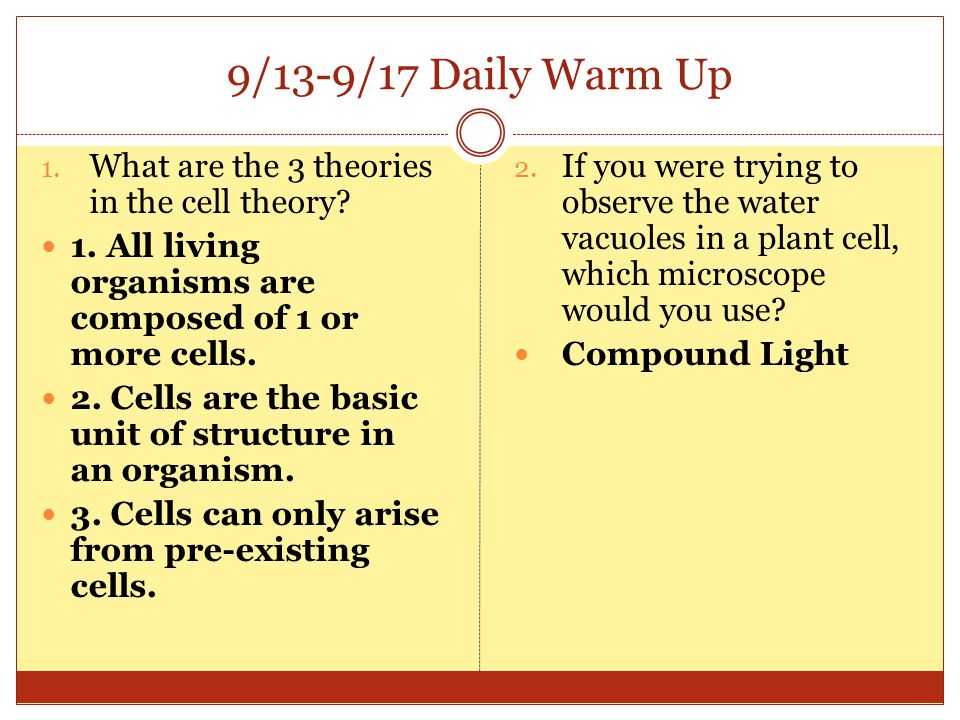 9/13-9/17 Daily Warm Up What are the 3 theories in the cell theory