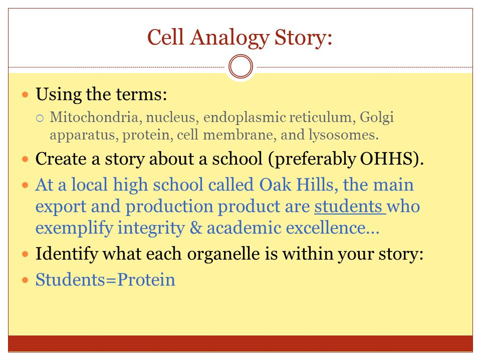Cell Analogy Story: Using the terms: