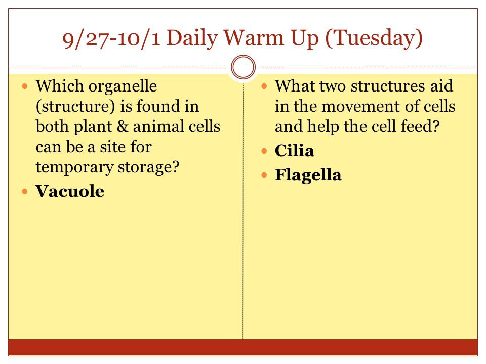 9/27-10/1 Daily Warm Up (Tuesday)