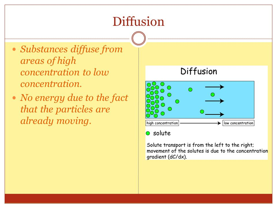 Diffusion Substances diffuse from areas of high concentration to low concentration.
