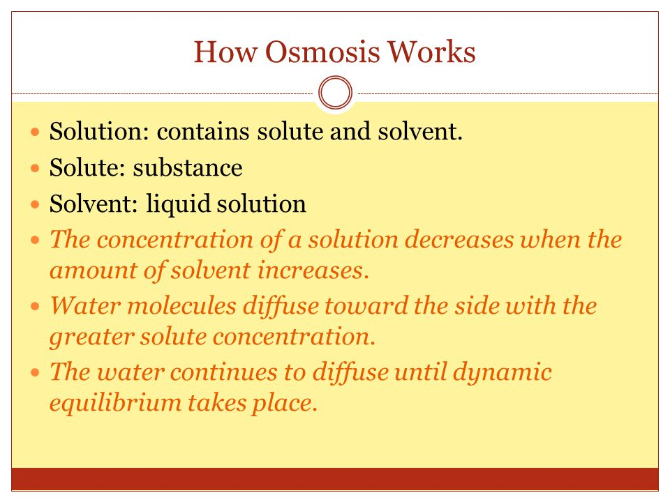 How Osmosis Works Solution: contains solute and solvent.