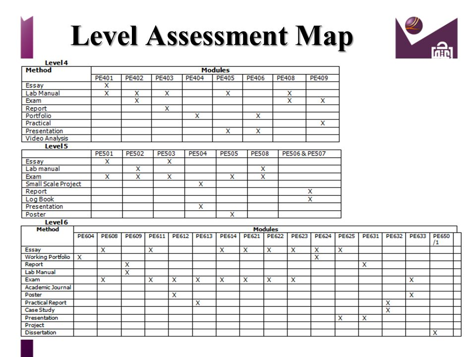 Level Assessment Map