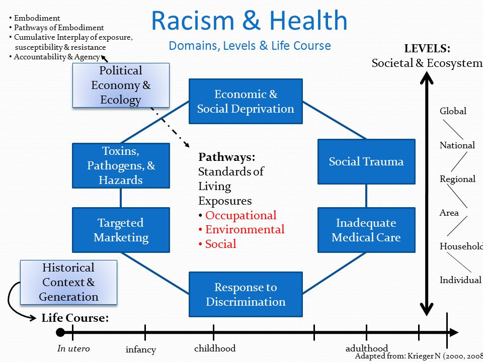 Racism & Health Domains, Levels & Life Course