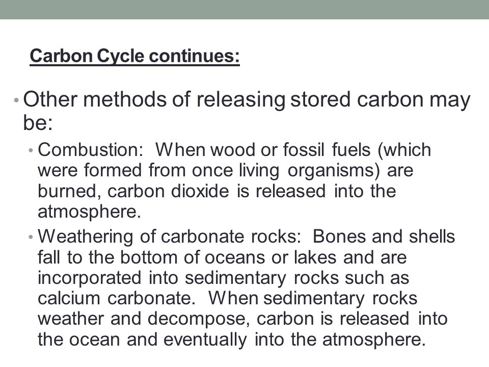 Carbon Cycle continues: