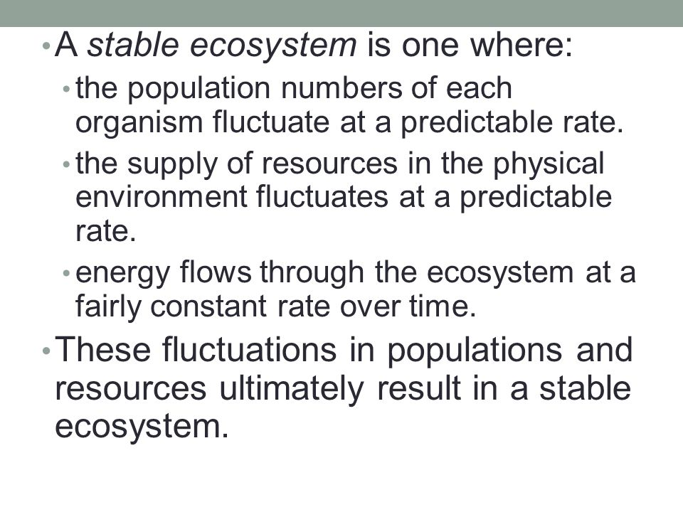 A stable ecosystem is one where: