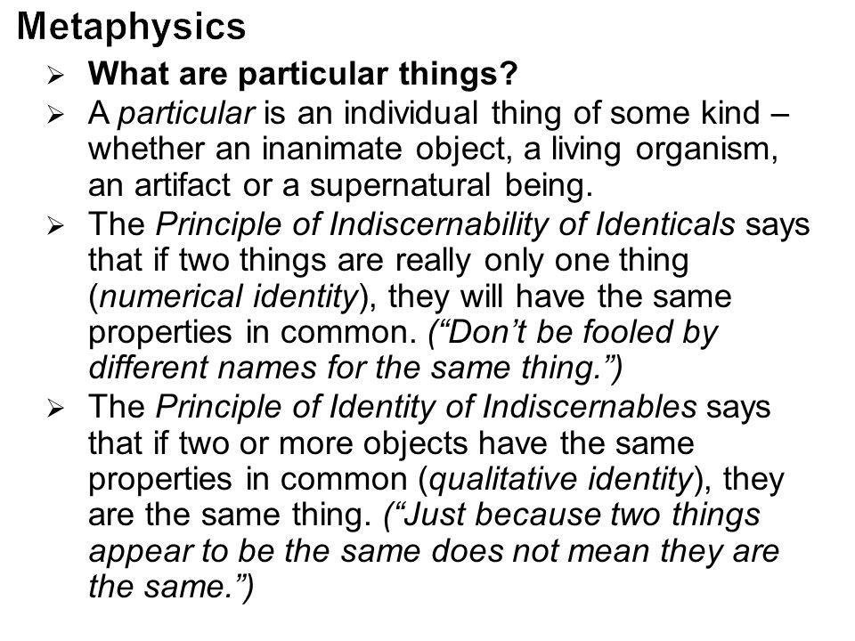 Metaphysics What are particular things