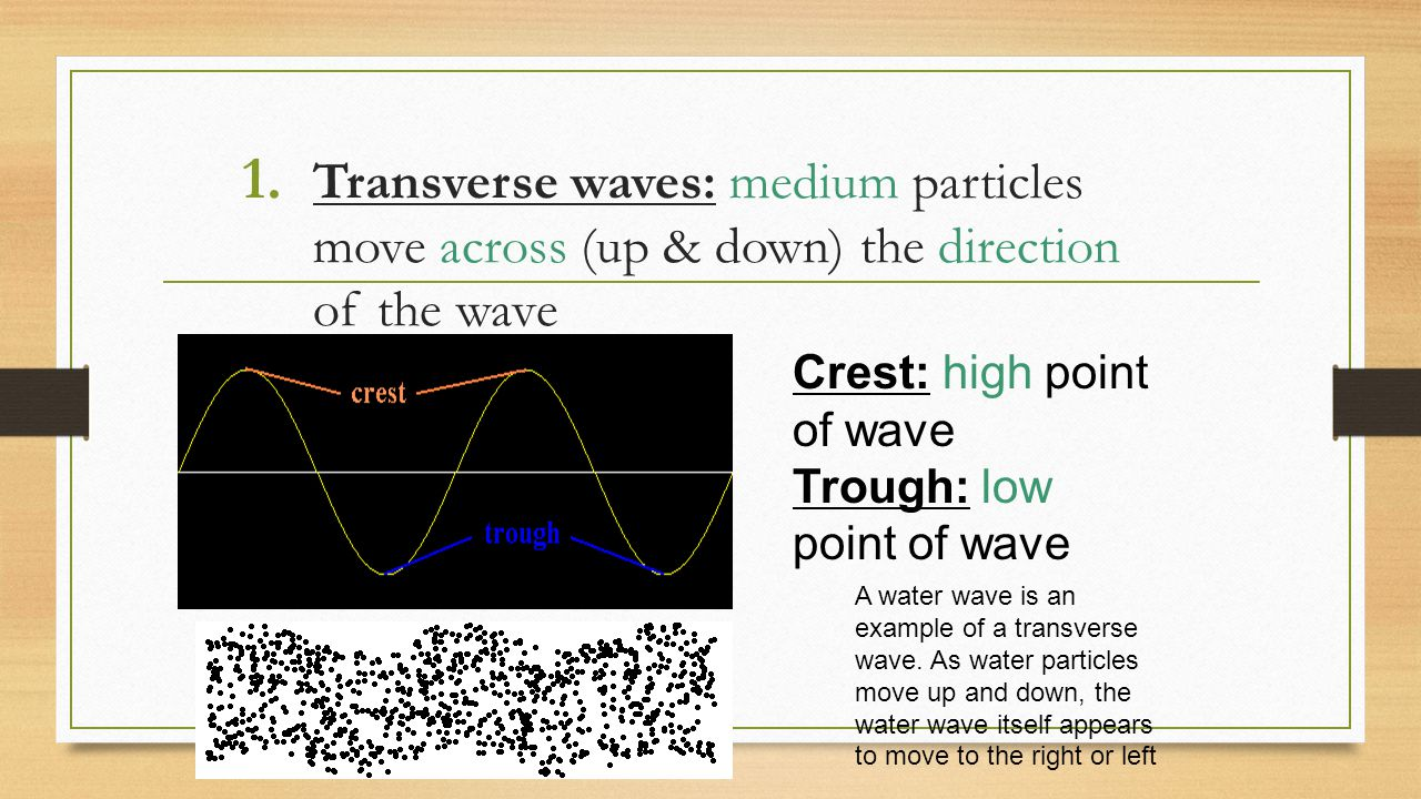 Transverse waves: medium particles move across (up & down) the direction of the wave