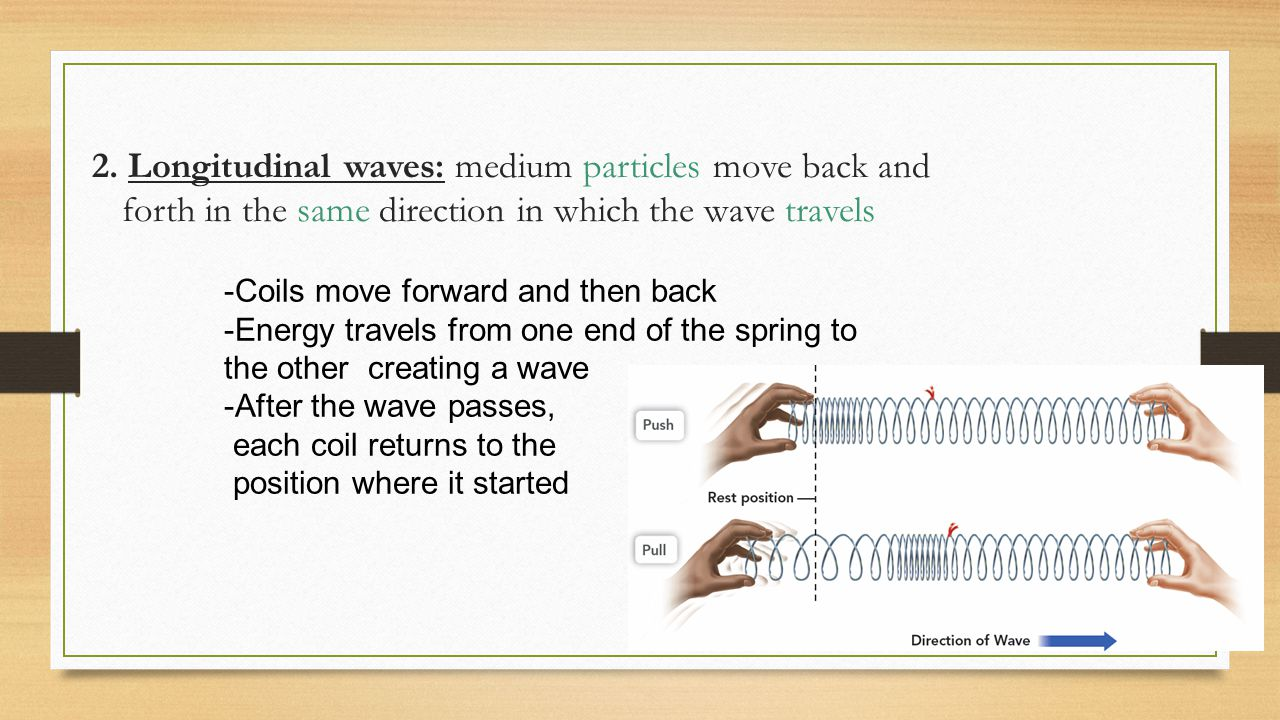 2. Longitudinal waves: medium particles move back and forth in the same direction in which the wave travels