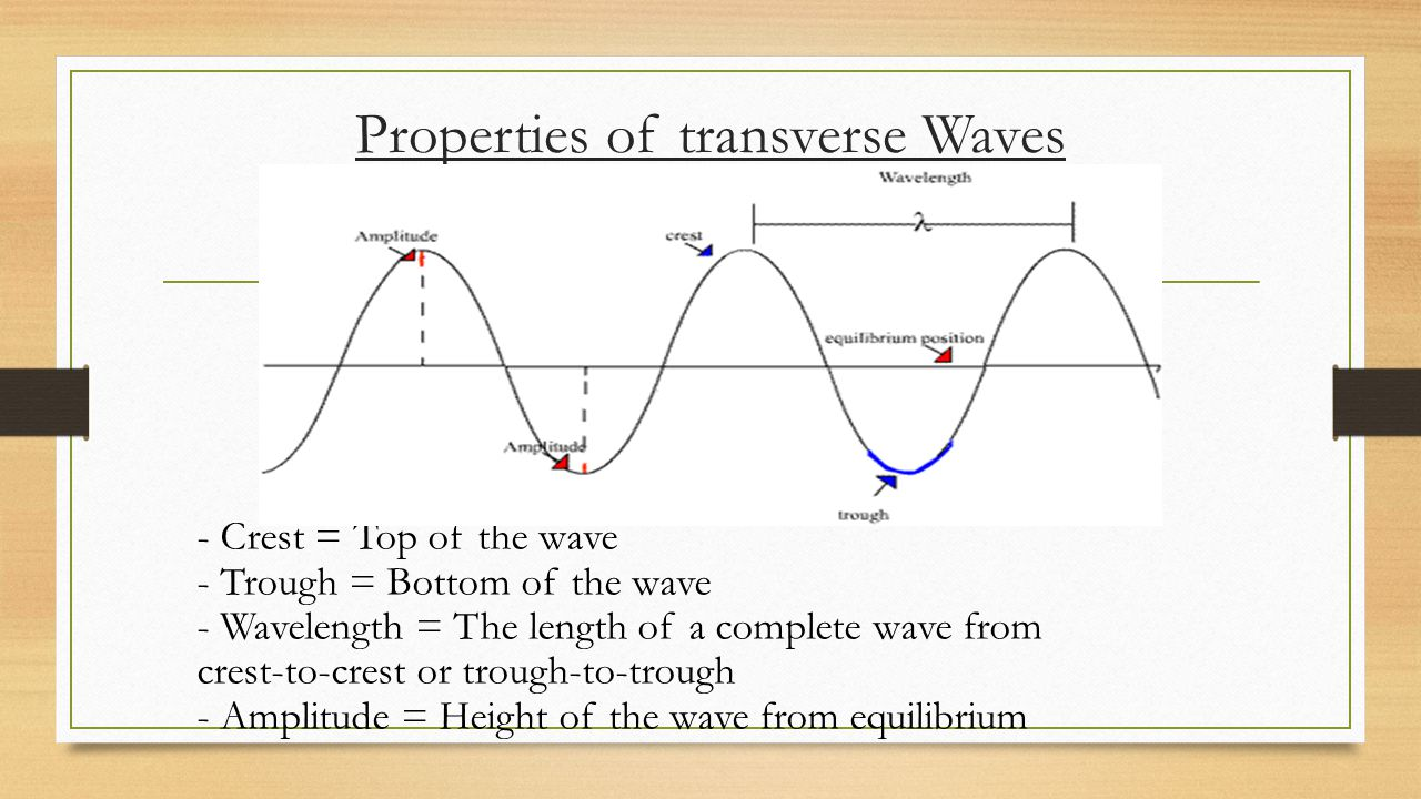 Properties of transverse Waves