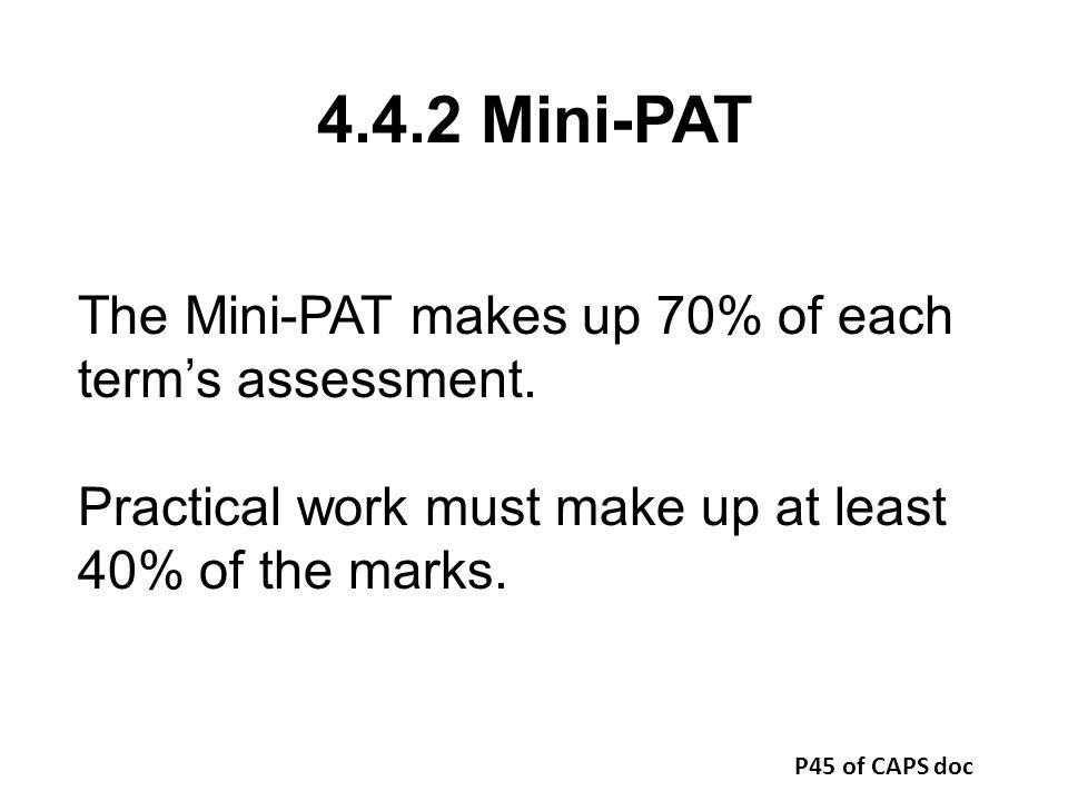 4.4.2 Mini-PAT The Mini-PAT makes up 70% of each term's assessment.