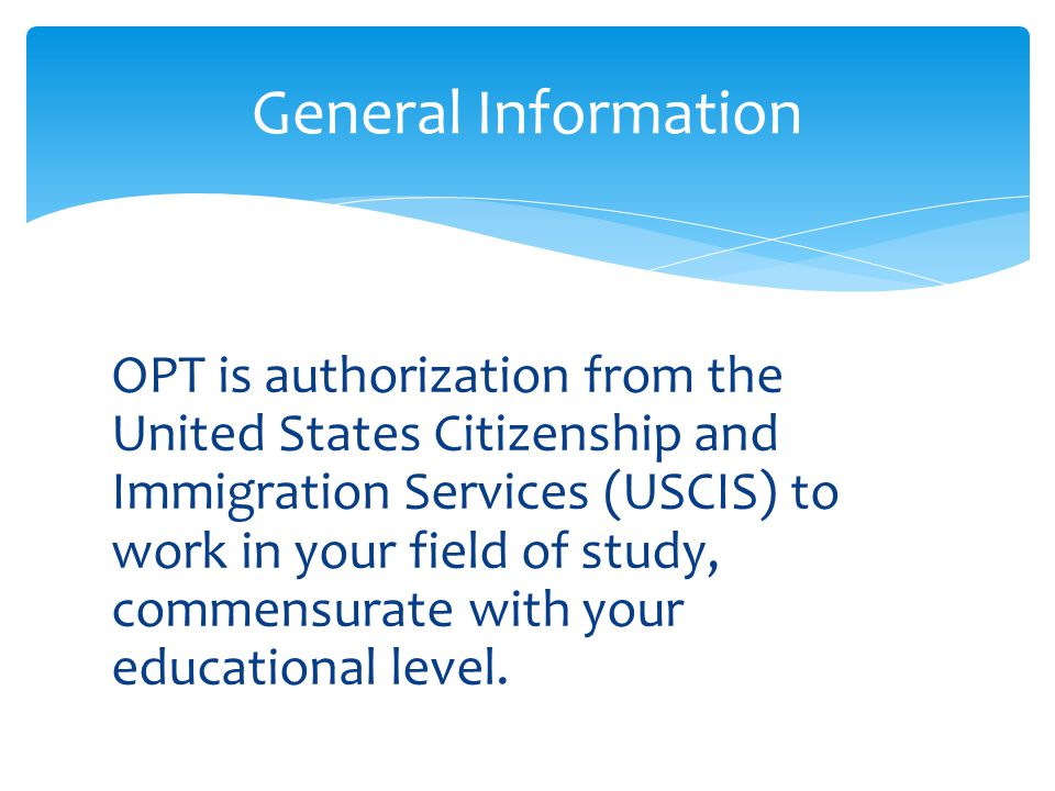INTERNATIONAL STUDENTS AND SCHOLARS OFFICE - ppt video ...