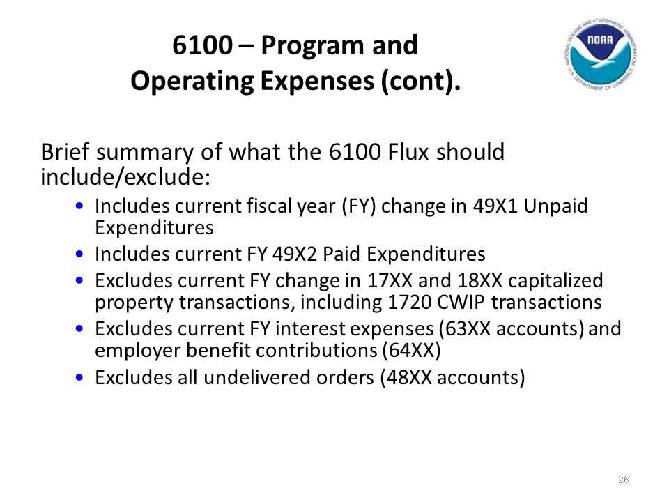 6100 – Program and Operating Expenses (cont).