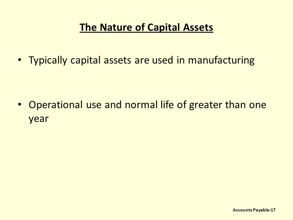 The Nature of Capital Assets