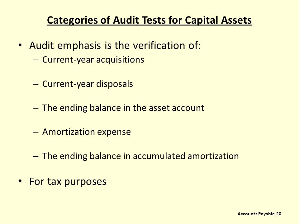 Categories of Audit Tests for Capital Assets