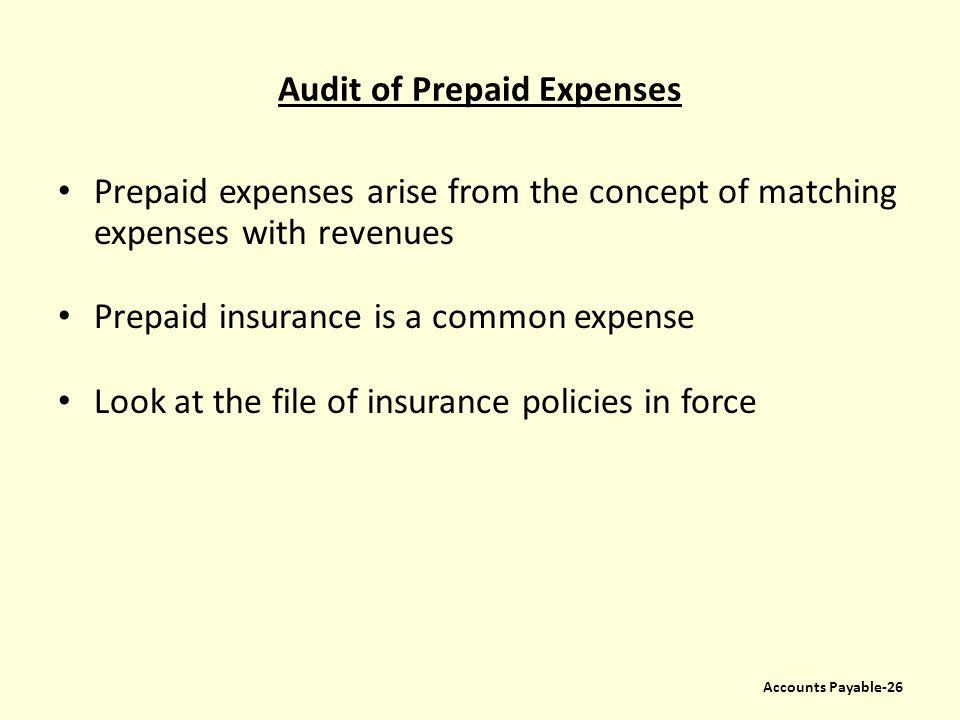 Audit of Prepaid Expenses