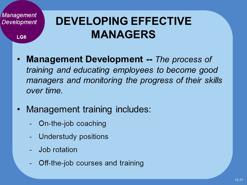 DEVELOPING EFFECTIVE MANAGERS