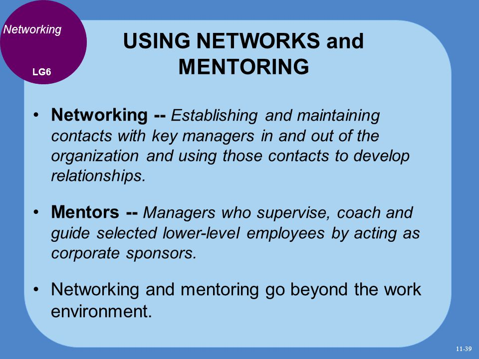 USING NETWORKS and MENTORING
