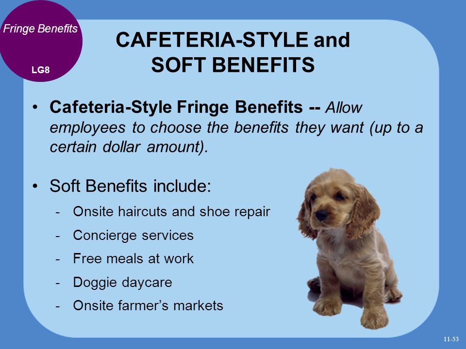 CAFETERIA-STYLE and SOFT BENEFITS