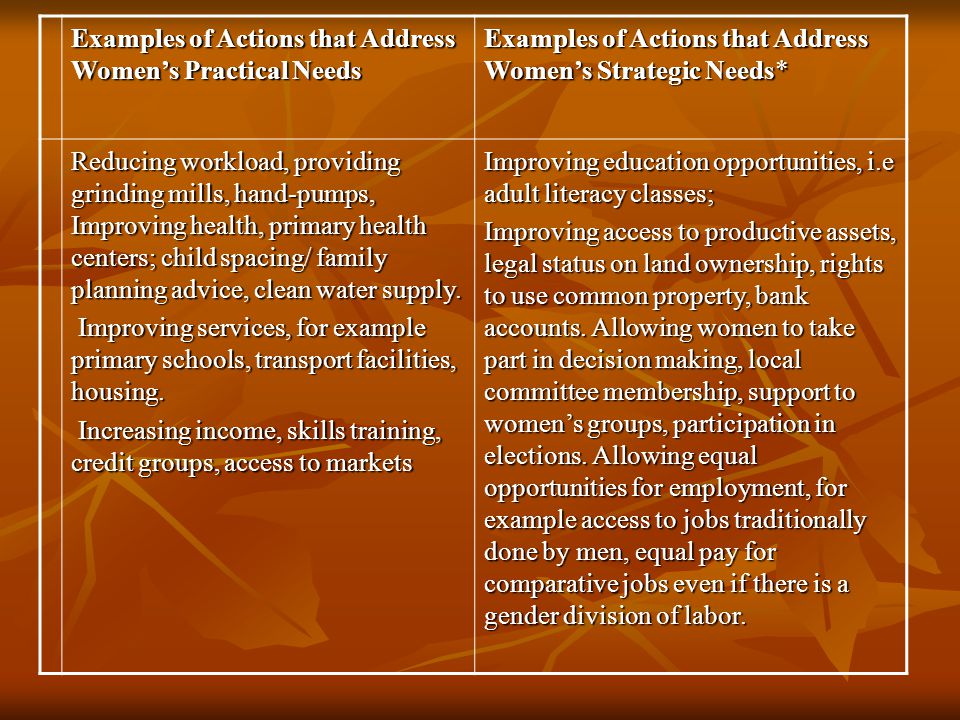 Examples of Actions that Address Women's Practical Needs