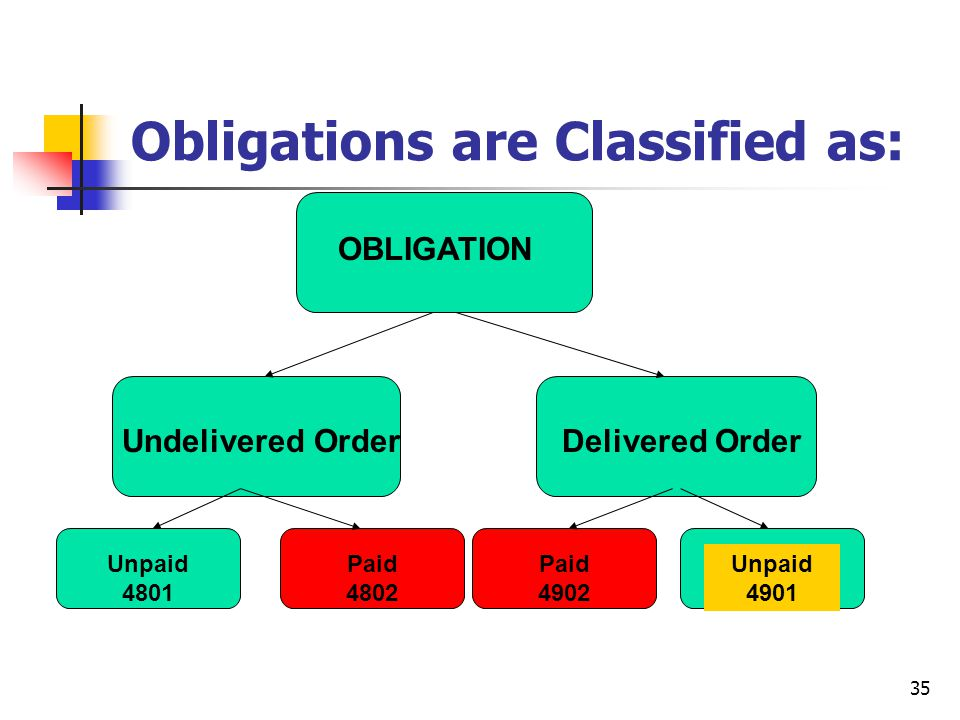 Obligations are Classified as:
