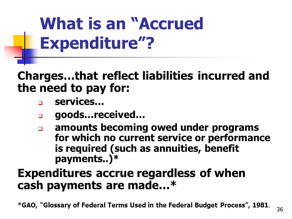 What is an Accrued Expenditure
