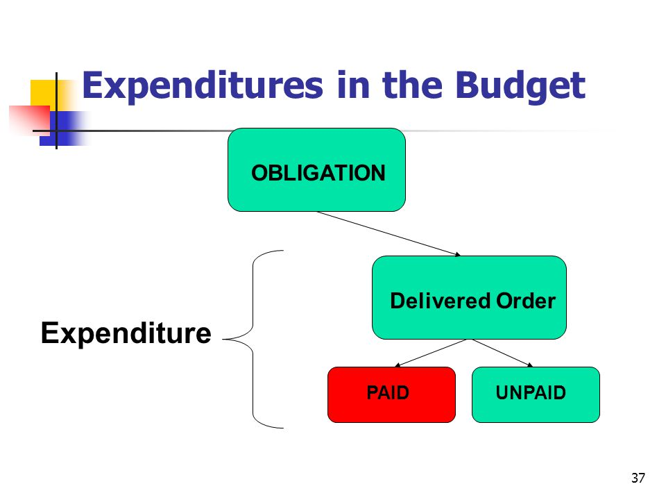 Expenditures in the Budget