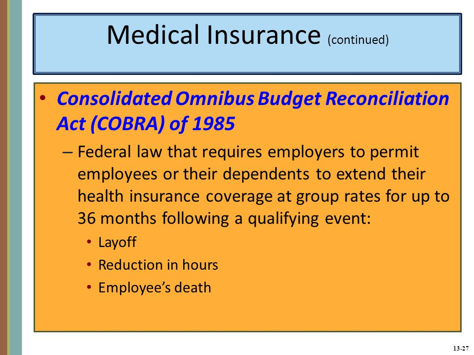 Medical Insurance (continued)