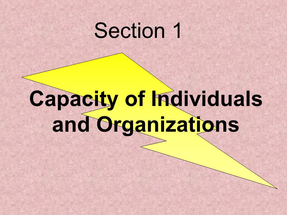 Capacity of Individuals and Organizations