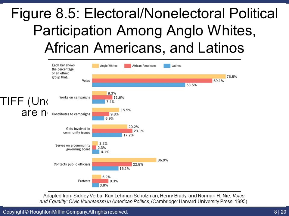 Figure 8.5: Electoral/Nonelectoral Political Participation Among Anglo Whites, African Americans, and Latinos