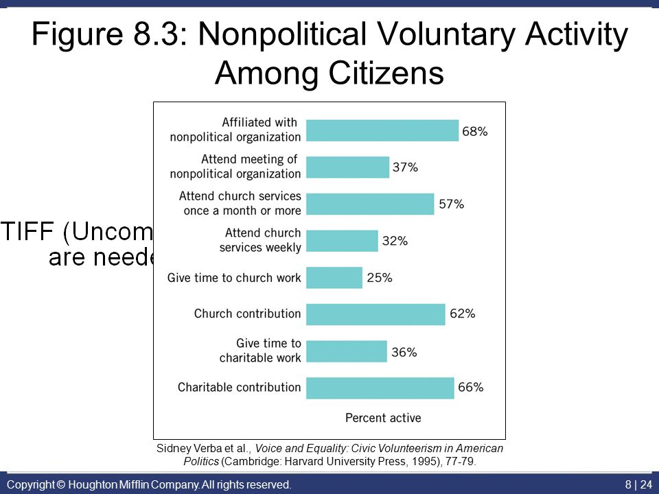 Figure 8.3: Nonpolitical Voluntary Activity Among Citizens
