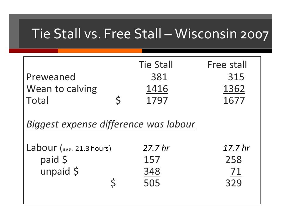 Tie Stall vs. Free Stall – Wisconsin 2007