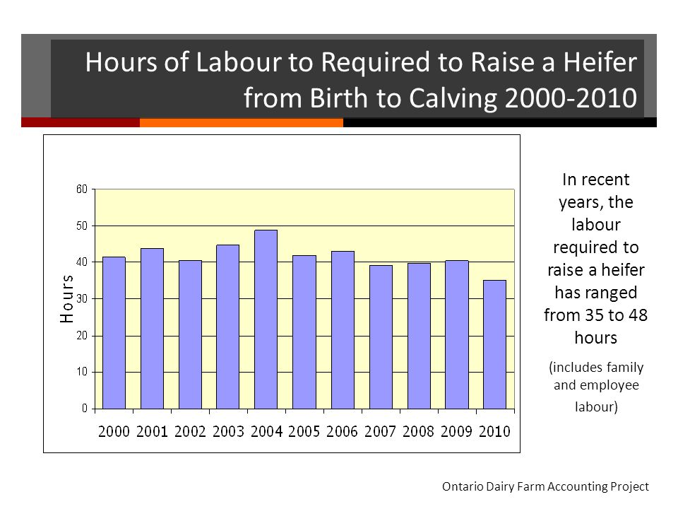 Hours of Labour to Required to Raise a Heifer from Birth to Calving 2000-2010