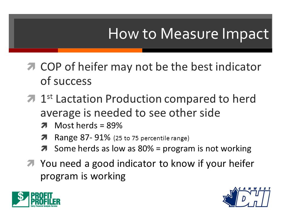 How to Measure Impact COP of heifer may not be the best indicator of success.