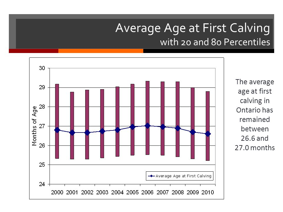 Average Age at First Calving with 20 and 80 Percentiles