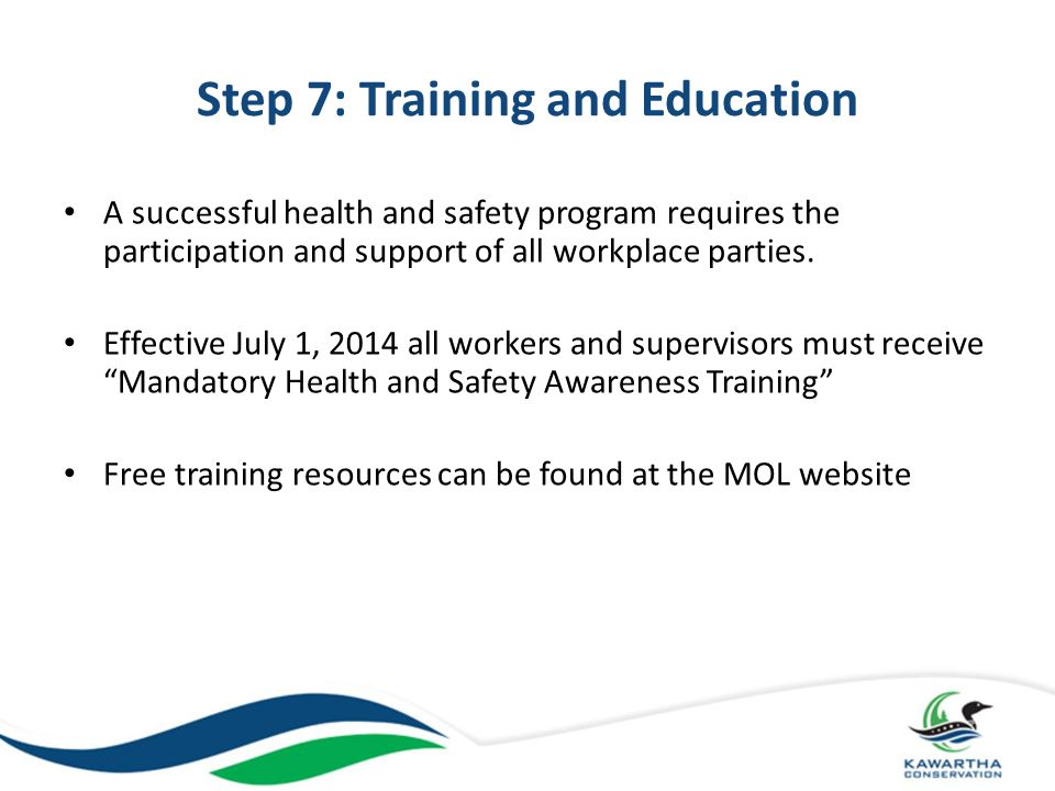 Step 7: Training and Education