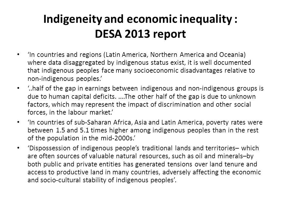 Indigeneity and economic inequality : DESA 2013 report